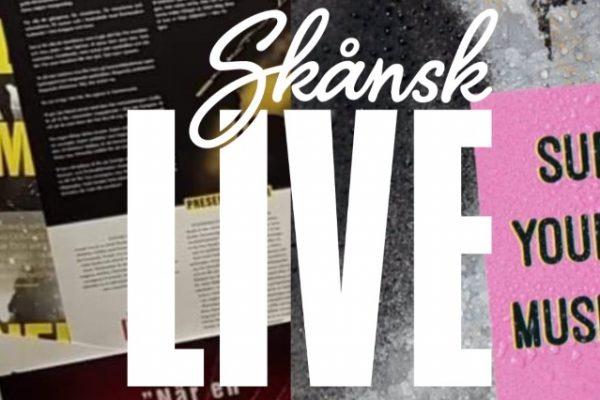 Bild och länk till artikeln Skånsk Live ser positivt på utredning om Malmöfestivalens framtid